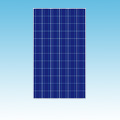 235W Polycrystalline Solar Panel of Solar Panels category Neptun SKU 235W Panel