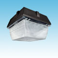 "LED - 12"" Canopy Fixture of DLC Listed Products category Neptun SKU LED-12040-UNV-750"