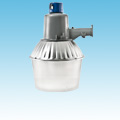 "Induction 12"" Security Light Fixtures 