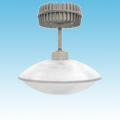 Induction - Pendant Canopy Fixture - 132xxx series of Induction Garage/Canopy Fixtures category Neptun SKU 132xxx Series