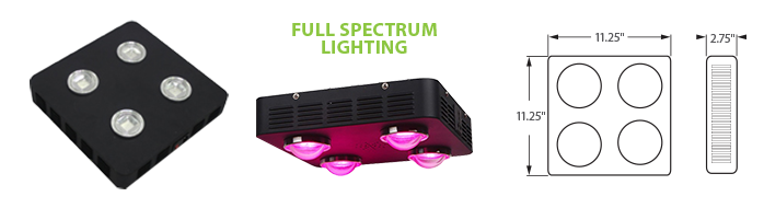 LED - COB Full Spectrum Grow Light - 4 Lamp