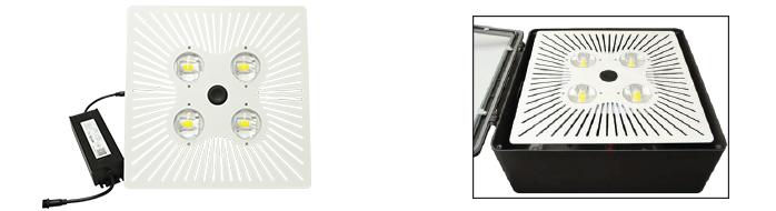 Neptun LED-95650RK-UNV 120//277V 50W 4100K retrofit mogul LED lamp